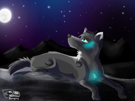 under the stars by Bonday