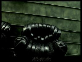 The Chaire by infazz