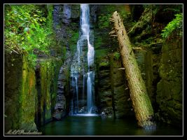 Silver Thread Falls 2 by Dracoart