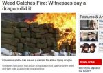 Weed catches fire by cosenza987