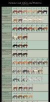 Centaur Equine Coat Colors by althea9