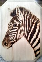 Zebra Woodburn by FreedomSparrow3