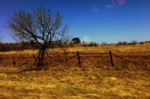 Country Roadside by TheGerm84