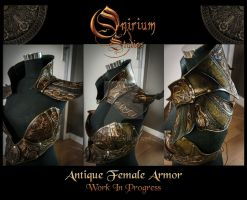 Antique Female Armored outfit by Deakath