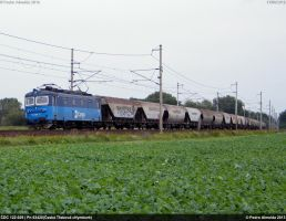CDC 122-029 63420 Stary Kolin 17-09-13 by Comboio-Bolt