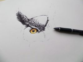 Angry owl,ballpoint - WIP by Mishice
