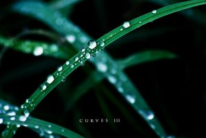 Curves III by AdvancedCartman