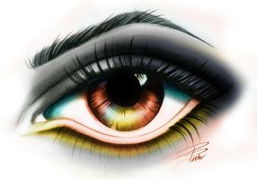 Eye Study by davepinsker