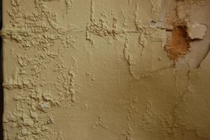 Wall Texture 4 - Stock 61 by CurlStock