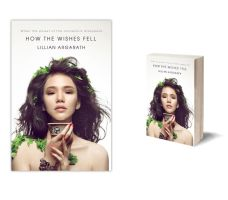 How the wishes fell book cover concept by ScarlettArcher