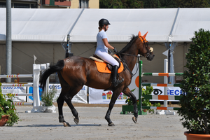 Show Jumping Stock 010 by Champi-Stock