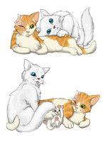 Cloudtail and Brightheart by creanima