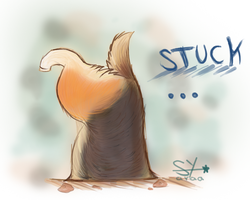 Stuck Corgi version by Syaraa