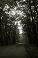 The Road by lacieg