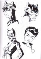 Catwoman Studies by ccootttt
