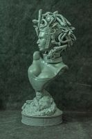 Medusa printed 2 by mufizal