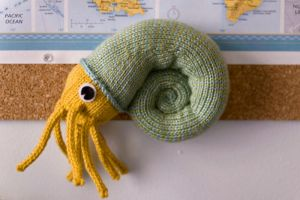 Knit Nautilus by jeannewilson