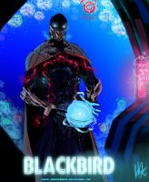 Blackbird 2014 by JohnOsborne