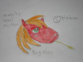 A drawing for Big Mac by Wael-sa