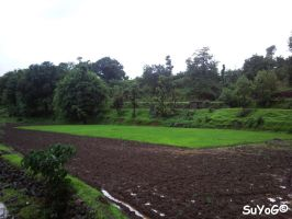 Bhandardara Scenery 6 by sds49in