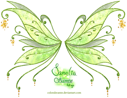 Janelia Samix Wings by Coloralecante