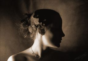 Classical Elegance by introversion