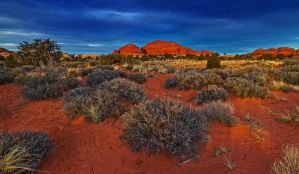 The Needles District by coulombic