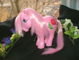 MLP Custom : Alt. Rose by marienoire