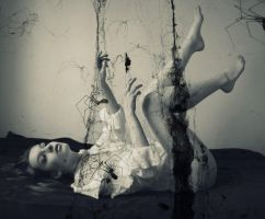 Caught In Spiders Webs by Jessica-Lorraine-Z