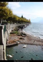 Curved Shore by ALP-Stock