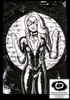 BlackCat Sketch by Docolomansky