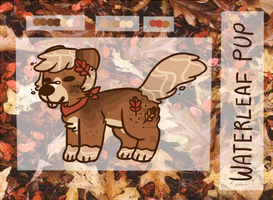 Oak Waterleaf Pup Auction // CLOSED by catpaths
