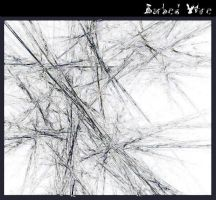 Barbed-Wire II by gippssi