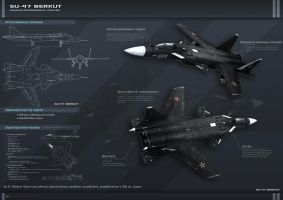 Su-47 Fighter by EvilChaotic