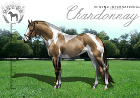ISI Chardonnay by Decorum100