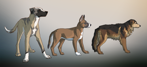 dog s by Canis-ferox