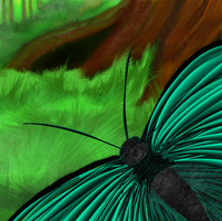 Forest Butterfly by horselife1236