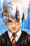 Multiple exposure Harry Potter 1st year by LivieSukma
