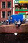 Amsterdam Colors by loffe123