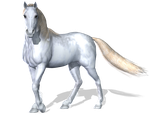 Horse 3 PNG by Variety-Stock