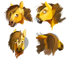 Horse Expressions by JustDayside