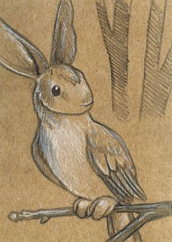Rabbird Sketch by ursulav
