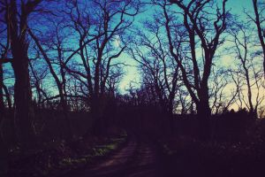 Pagan Poetry by LeaHenning
