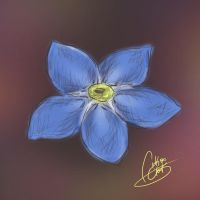 Sketches: Forget Me Not by NAD-LifeOfficial