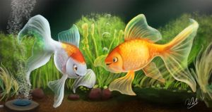 Gold Fish by cicakkia