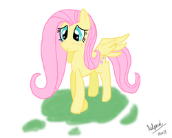 Fluttershy by Ailynd