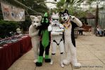 stormtrooper with ears.. ? by FurryFursuitMaker