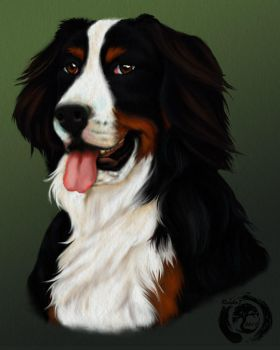 Pet Portrait 1 by rouko