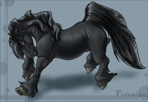 Friesian by taa