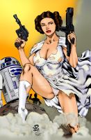 Princess Leia by Renato Camilo IB Devgear by THE-Darcsyde